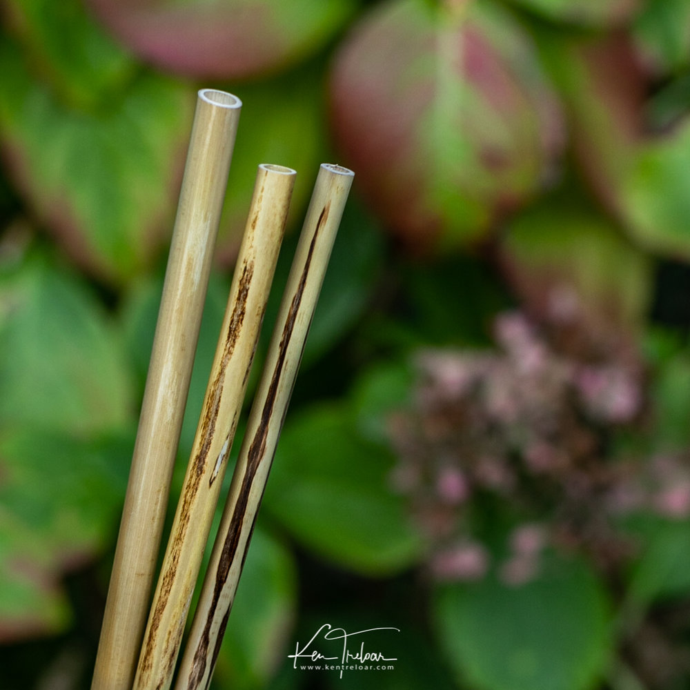 Khanyiso Reed Straws - Zero Plastic - Cape Town-6.jpg