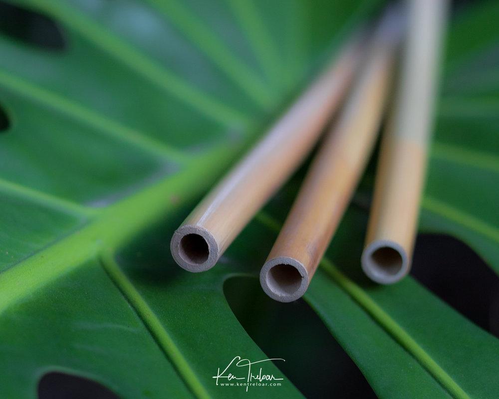 Khanyiso Reed Straws - Zero Plastic - Cape Town-9.jpg