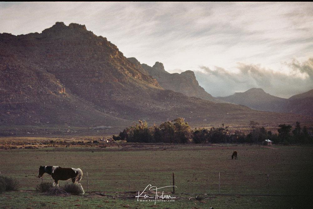 Cederberg Trip - Film - by Ken Treloar-5.jpg