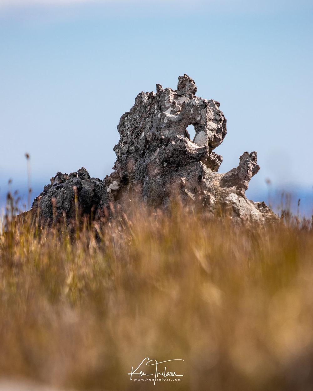 Mont Rochelle - Franschhoek Hike - IMages by Ken Treloar-6.jpg