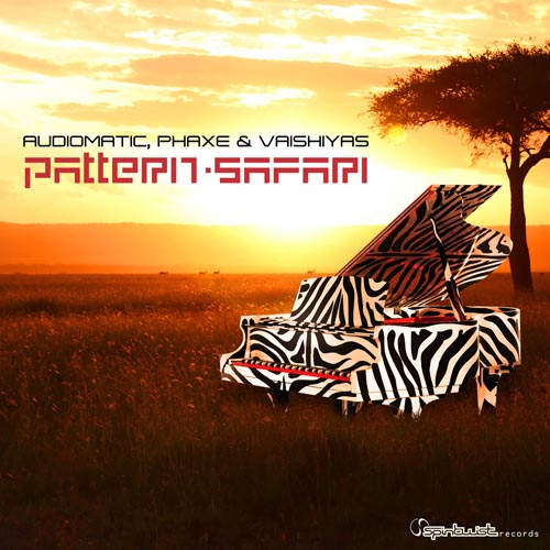 1.Audiomatic, Phaxe &  Vaishiyas - Pattern Safari.jpg
