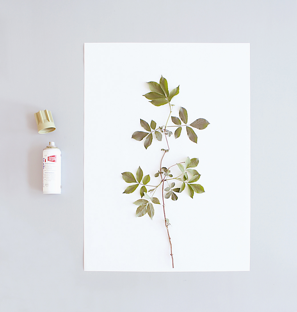 Nature-Art Prints-DIY-decor8-KerstinR-April16 (1)