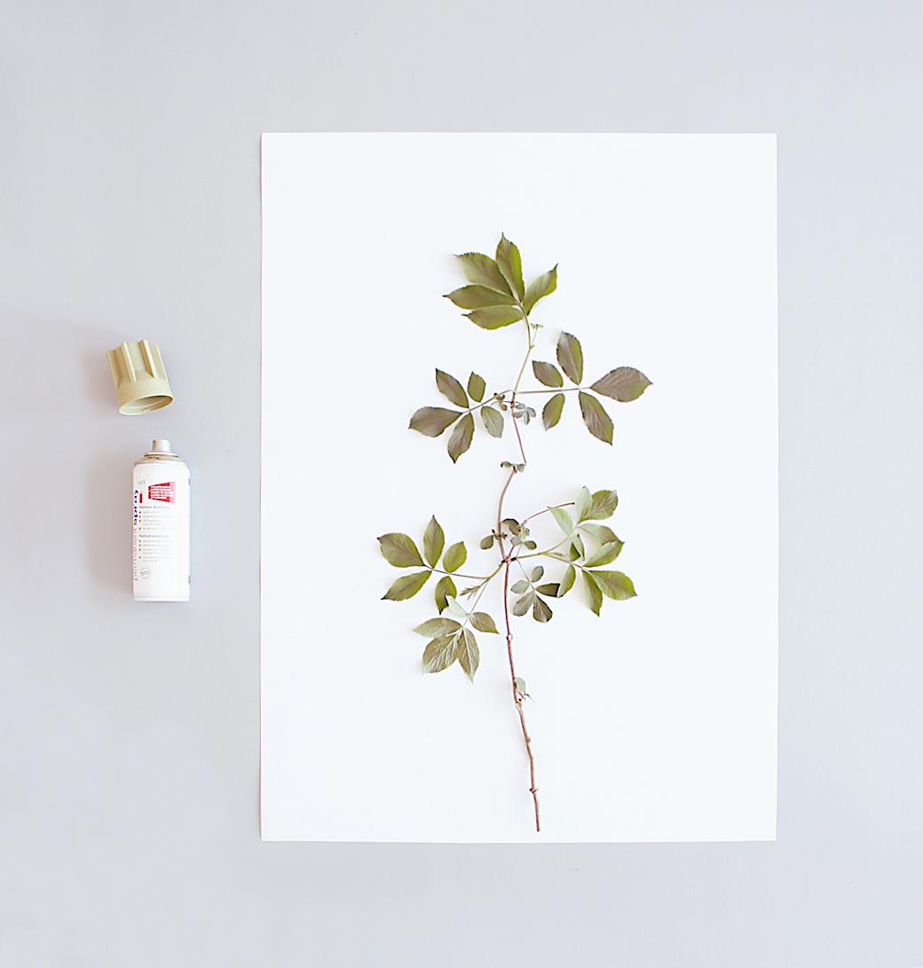 Nature-Art Prints-DIY-cattledogs-KerstinR-April16 (1)