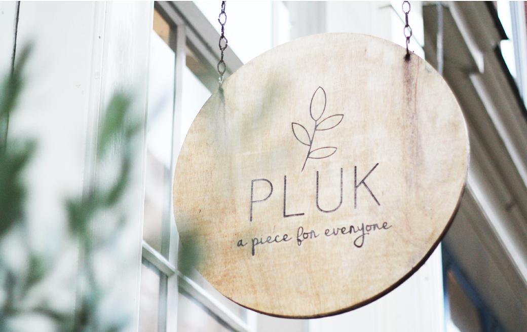 PLUK_11
