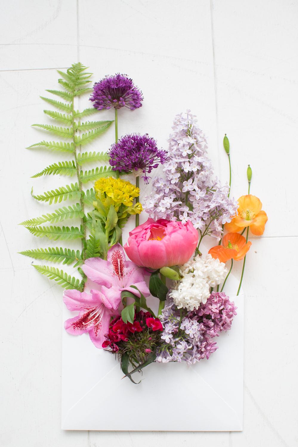 Blume-des-Monats-05-2016-208.jpg