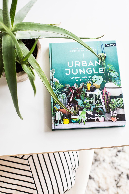 urbanjunglebookreview_cattledogs.jpg
