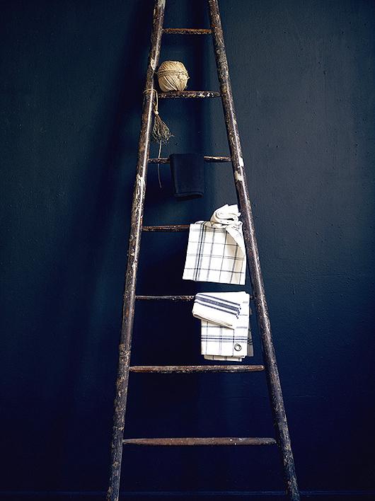 moodyblue_Hans Blomquist ladder