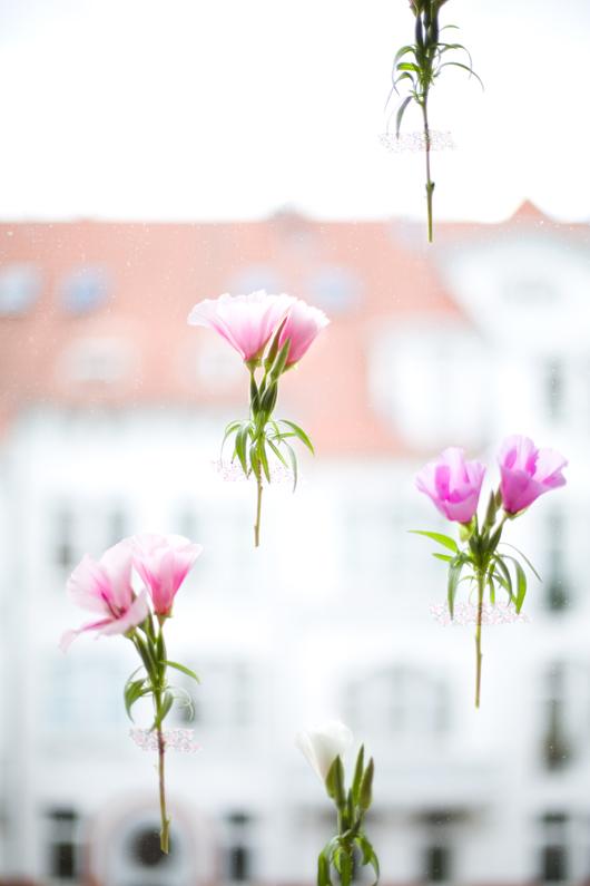 flowers_window2