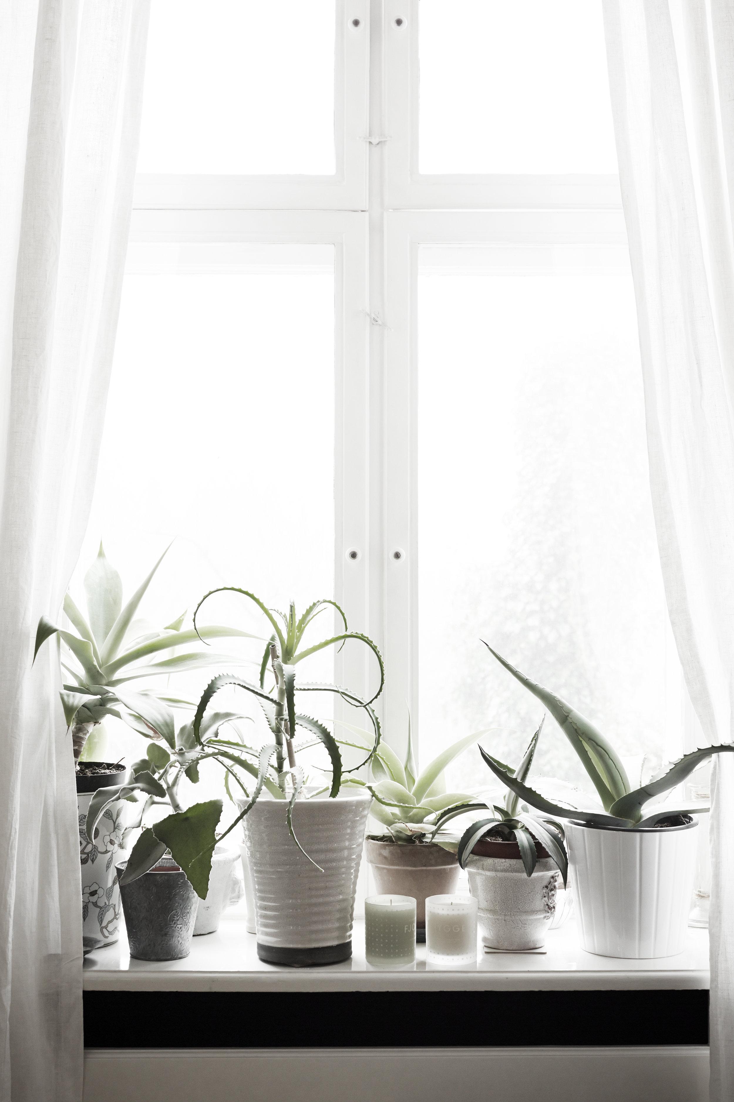 Skandinavisk_interior18601
