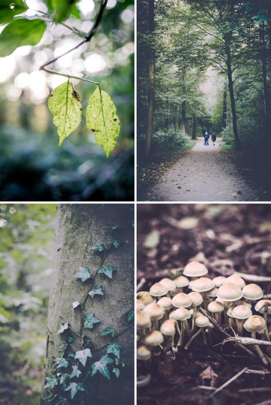 autumndecor8_hollybecker4