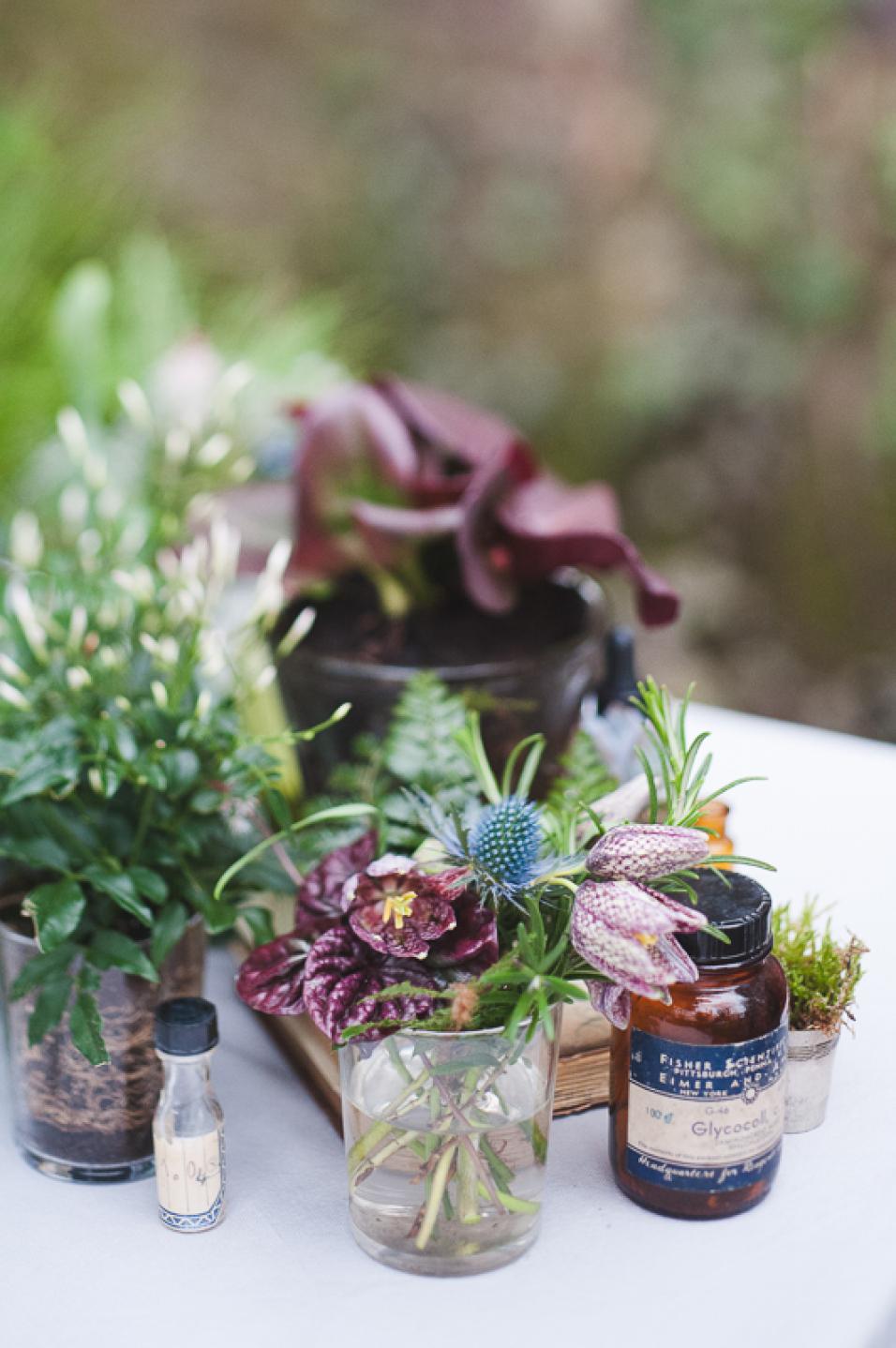 marionhphotography-inspiration-jardin-botanique-WEB-1