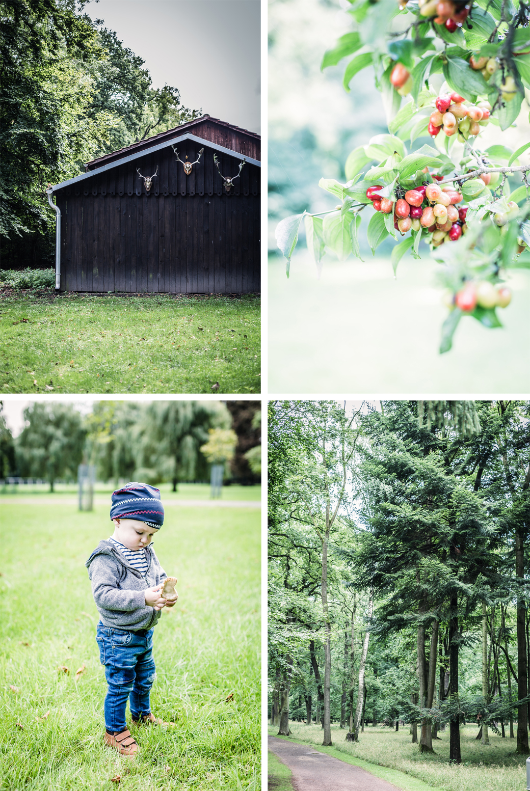Blog_decor8_Herbst2015
