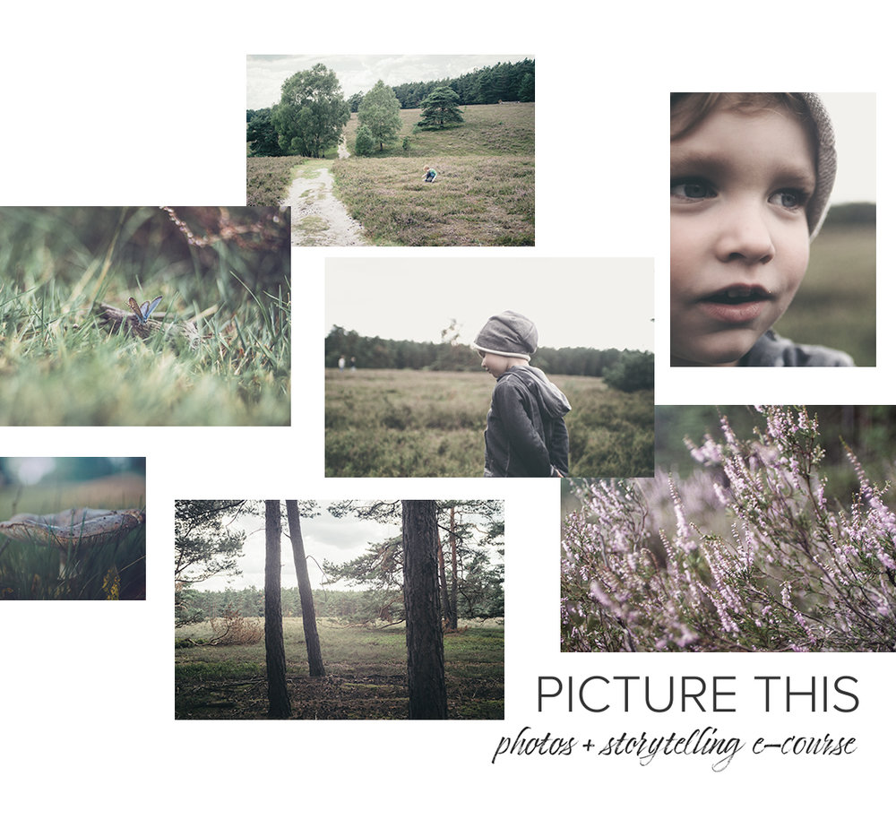Picture This: Photos + Storytelling e-course