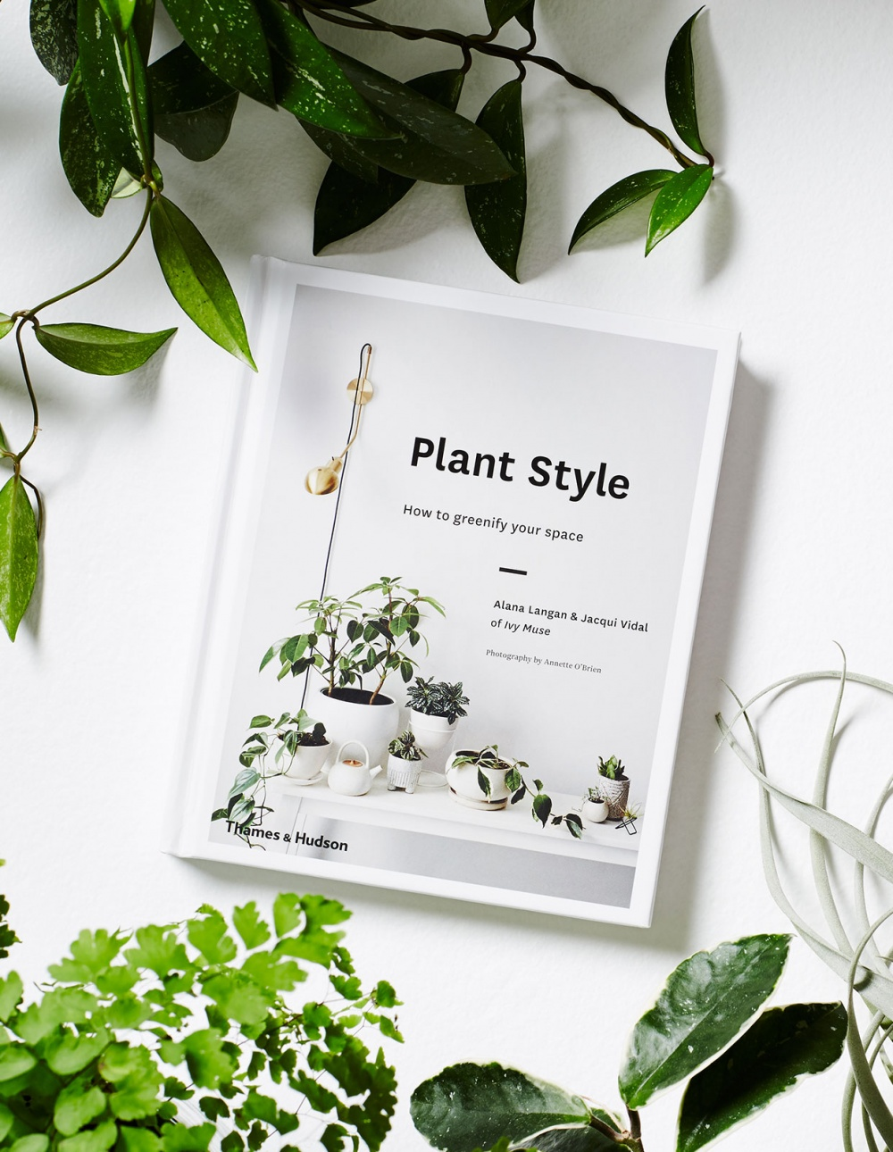 Plant Style: How to greenify your space  by  Alana Langan  and  Jacqui Vidal
