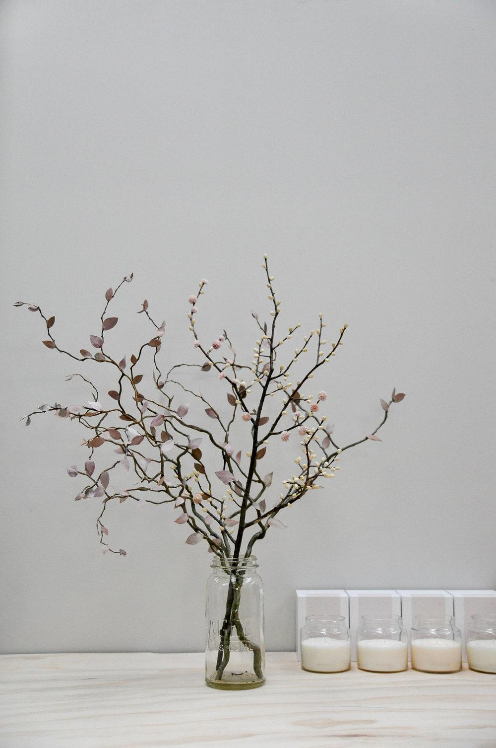 Mark Antonia Dried Flora
