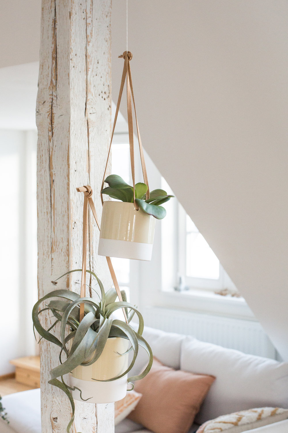 Faux leather straps with ceramic pots to hang for the Urban Jungle