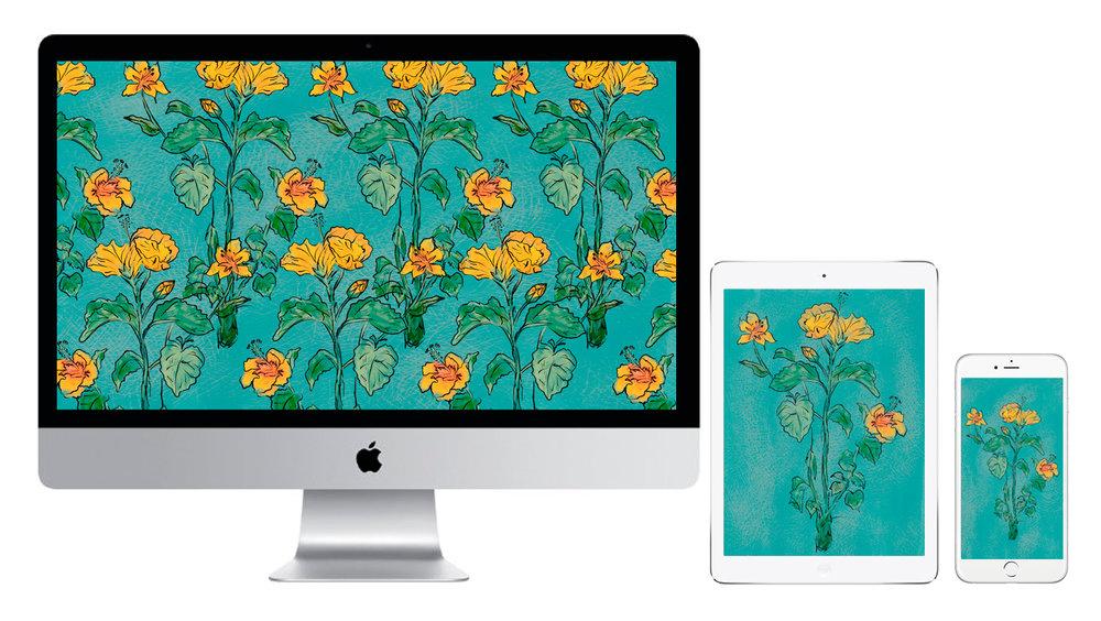 Yellow-Hibiscus-Moncharis-Tablet-Wallpaperblog.jpg
