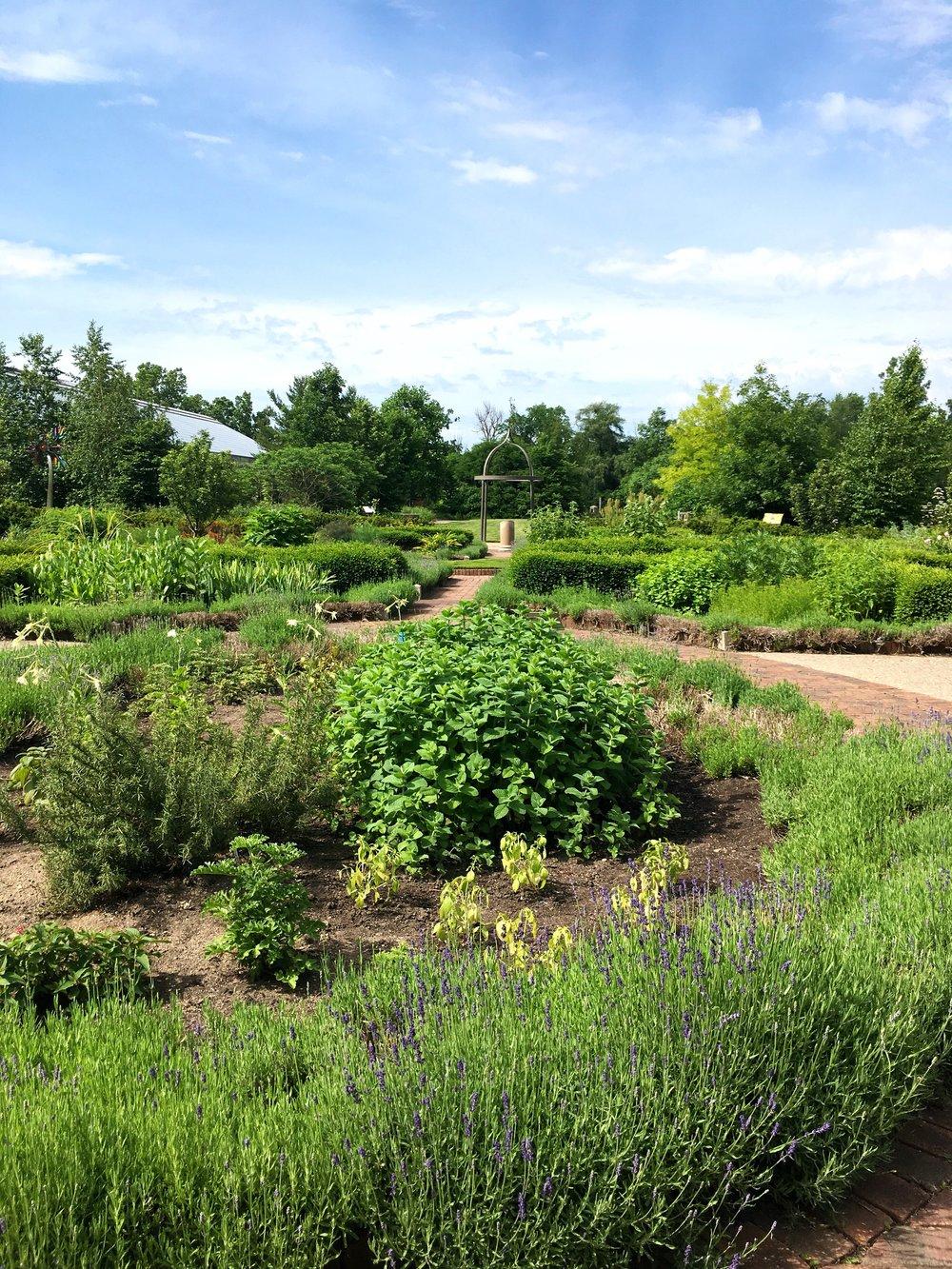 Garden view. Moncharis.jpg