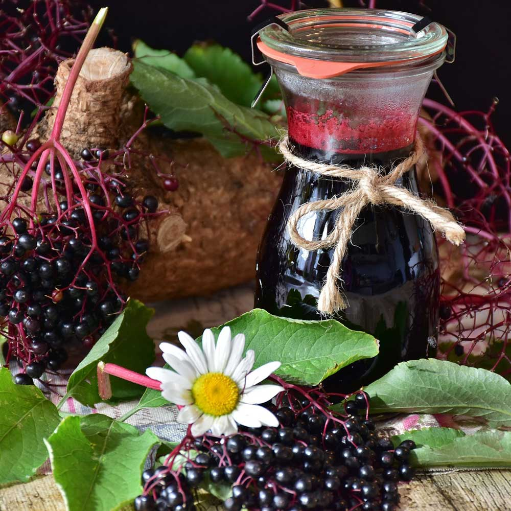 elderberry-naturally-curated.jpg