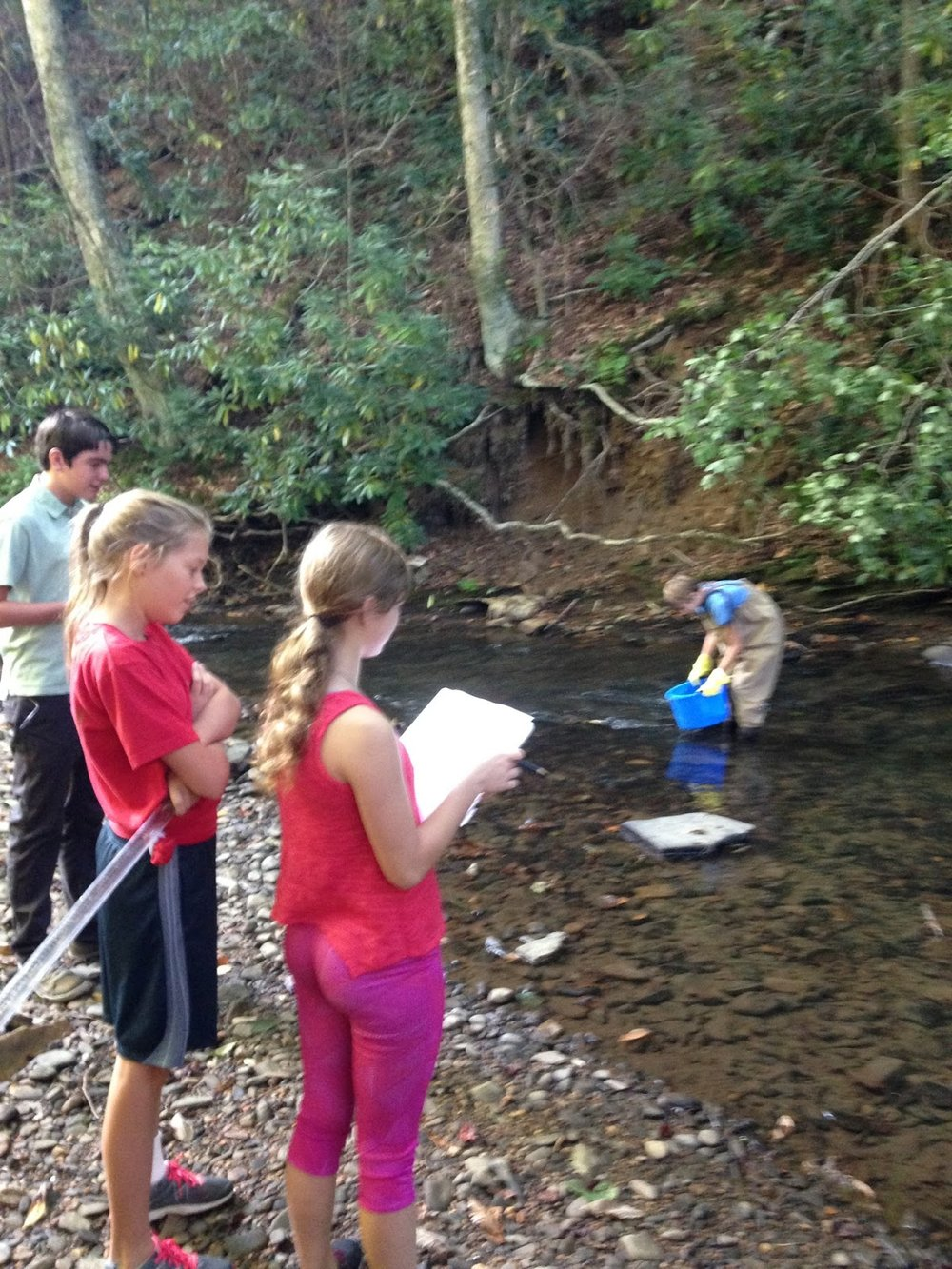 Middle Schoolers monitoring Howard's Creek - The Middle Schoolers are continuing to monitor the health of Howard's Creek and submitting results to the State.
