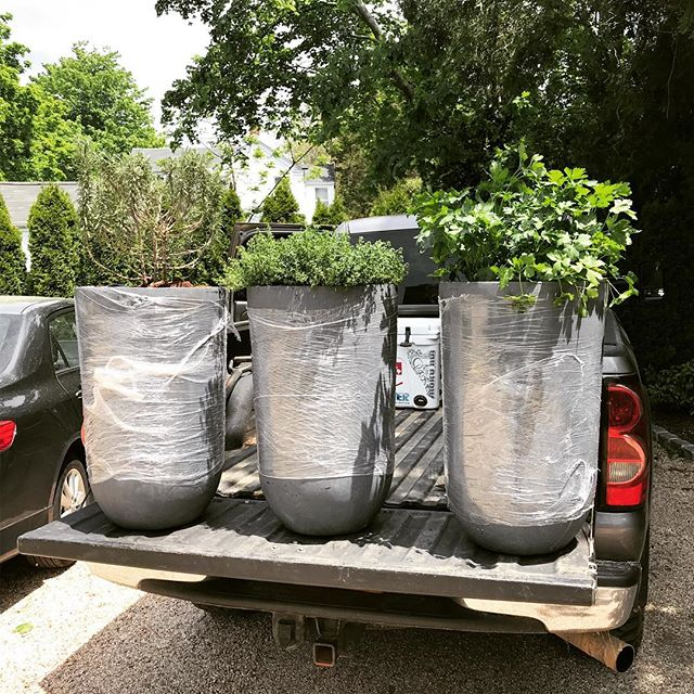 #herbplanters #specialdelivery #certifiedorganic #organic #farmtotable #farm2table #nofo #hamptons #freshleecut #sangleefarms #local #sustainable #homegarden #homegrown #garden #ediblegarden