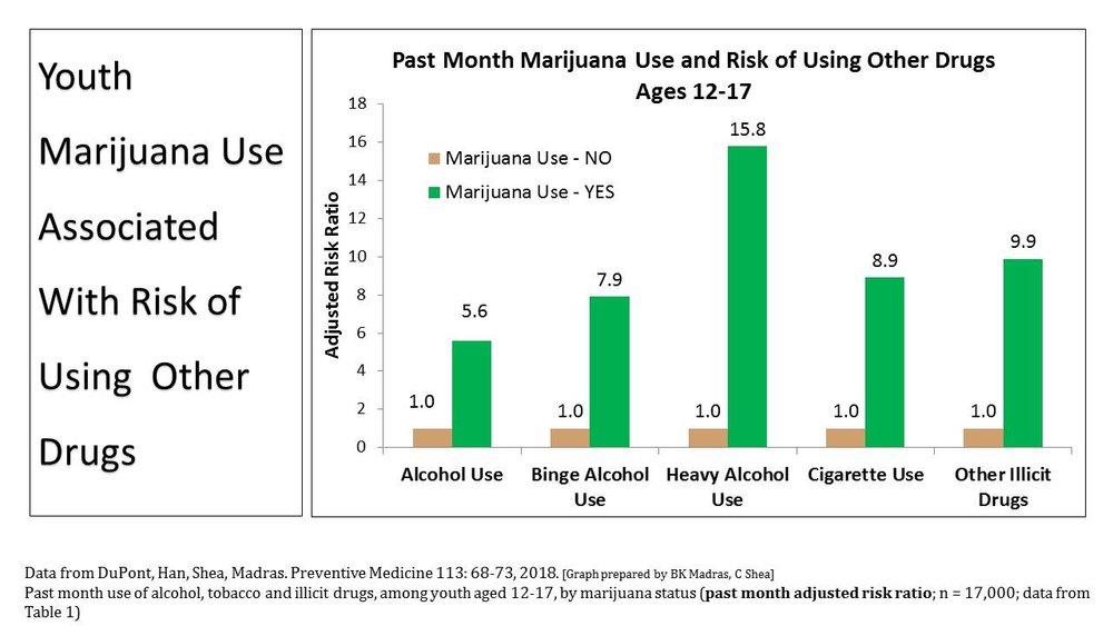 Risk_Drug_Use_by_MJ_Use_Status-2.JPG