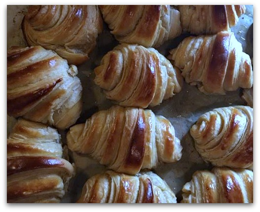 sd croissants cover.jpg