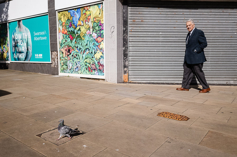 man-and-pigeon-walk.jpg