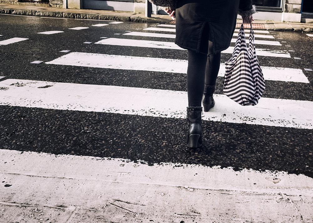 zebra-bag.jpg