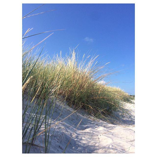 Pentle Bay evening picnic last night 🙌 . . . . . #tresco @trescoisland #pentlebay #beach #island #landscape #escape #holiday #inspiration #design #newcollection #nature #fashionedfromnature