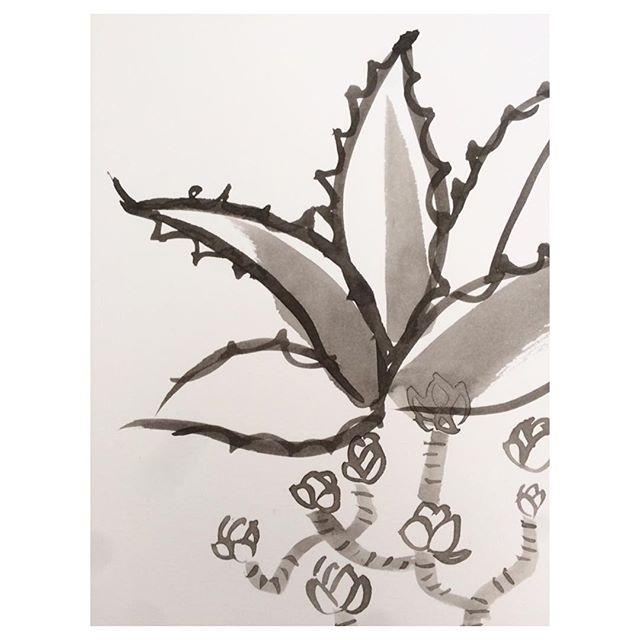 New print sketches 🌿 . . . . . #sketching #painting #design #newcollection #fashion #style #print #tresco @trescoisland #garden #plants #plantsofinstagram #botanical #textiles