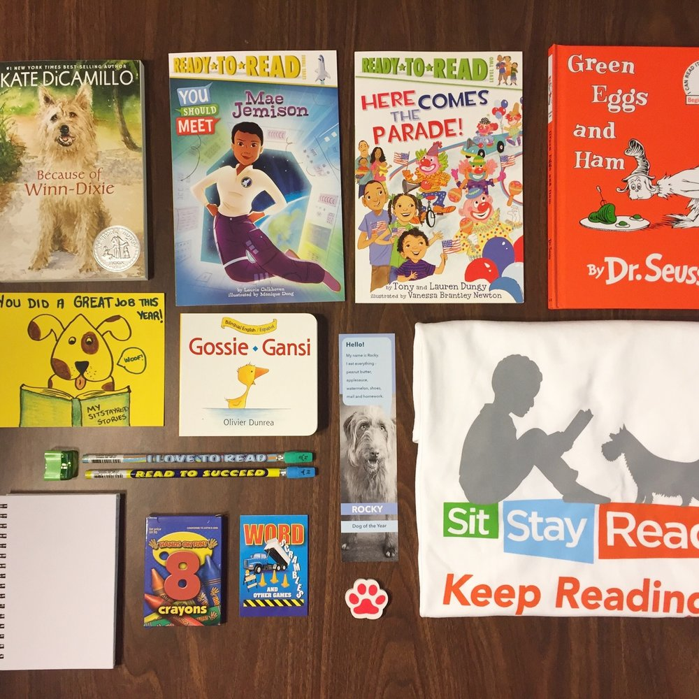 Summer Reading Fun Pack contents from 2016-17.