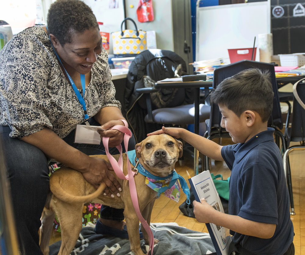 Dog Team volunteer Lisa and her Certified Reading Assistance Dog Allie listen to a second grade student in the SitStayRead Tail Blazers program at Marquette Elementary. (J. Sall)