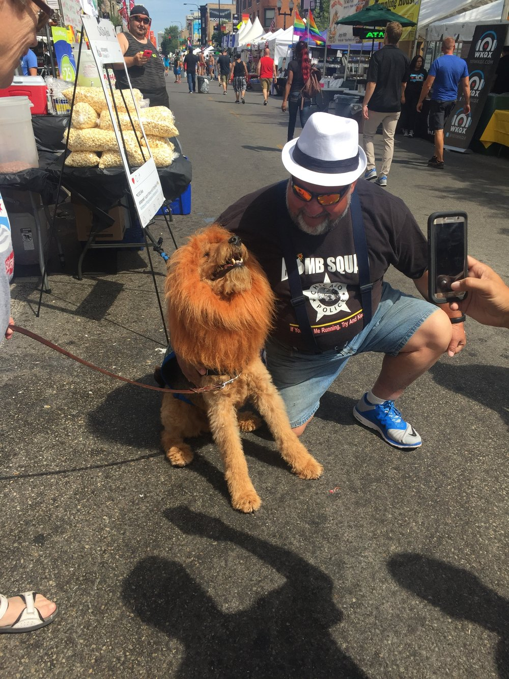 Certified Reading Assistance Dog (Lion), Buddy, basks in the sun with his lion mane as he gets pets. (M. Rosales)