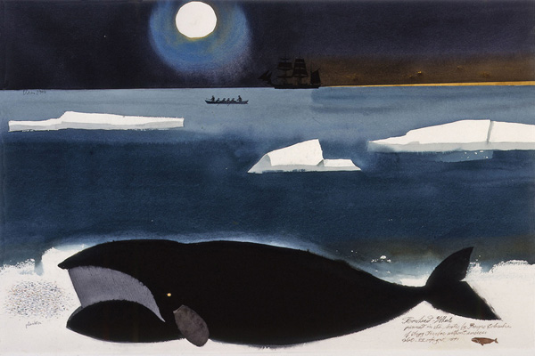 Bowhead Whale in the Arctic