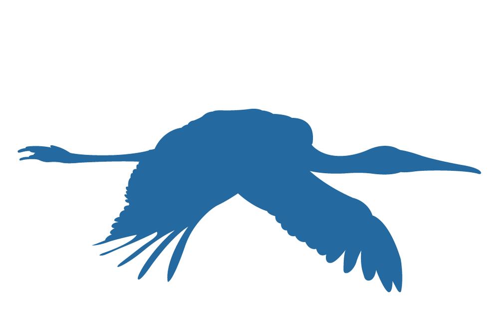 FSTM_Logo_Animated_2-15.png