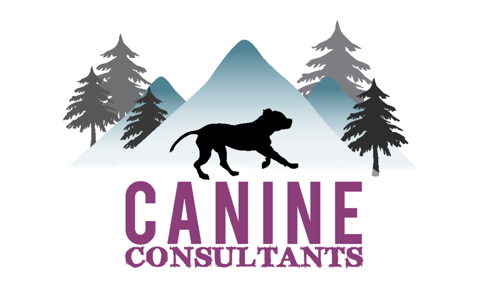 Canine Consultants Biz card v1b-01.png
