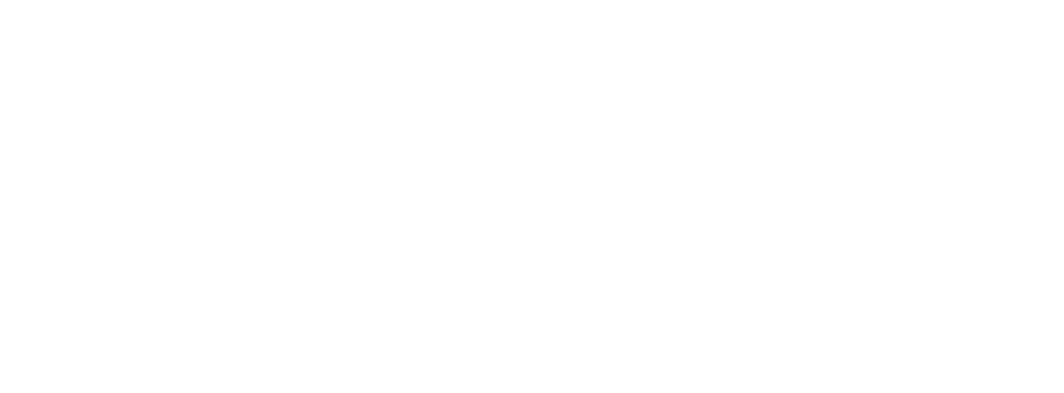 Skyway Media Group