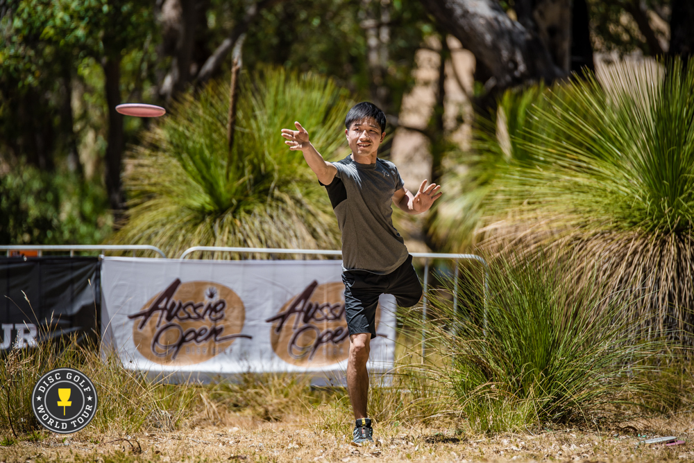 Photo: Eino Ansio, Disc Golf World Tour
