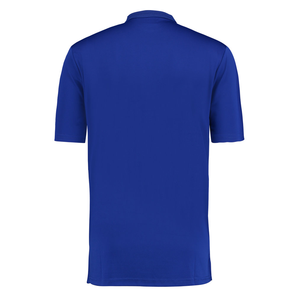 spin polo blue back.jpg