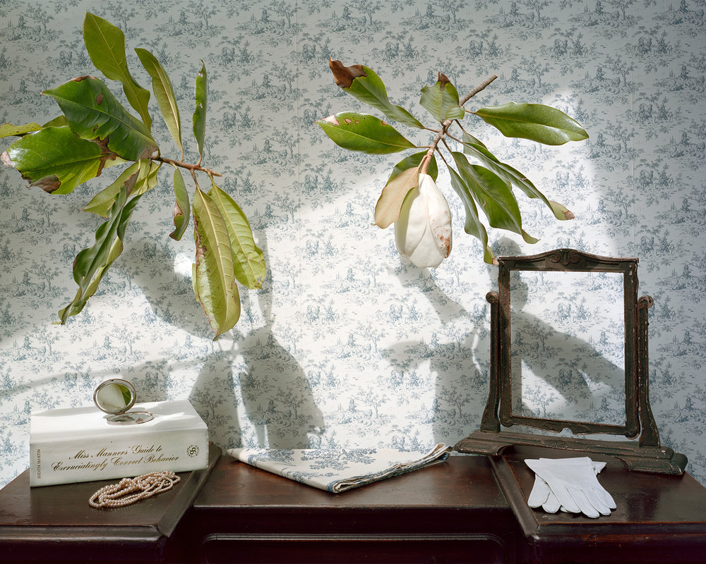 Still Life with Magnolia & Pearls