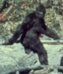 bigfoot1.jpg