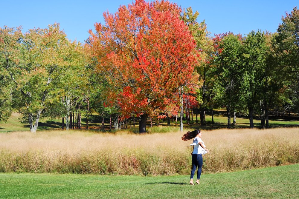 Melanie Sutrathada shares her guide to New York this fall..JPG