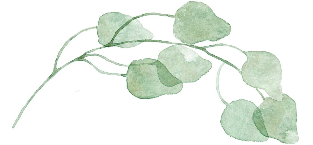 long-leaf-01.jpg
