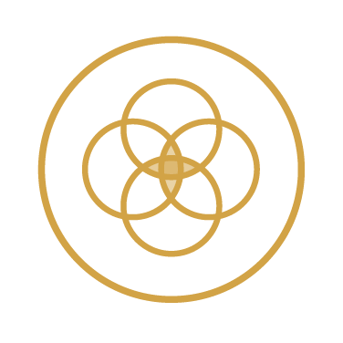 SP-Icon1-02.jpg