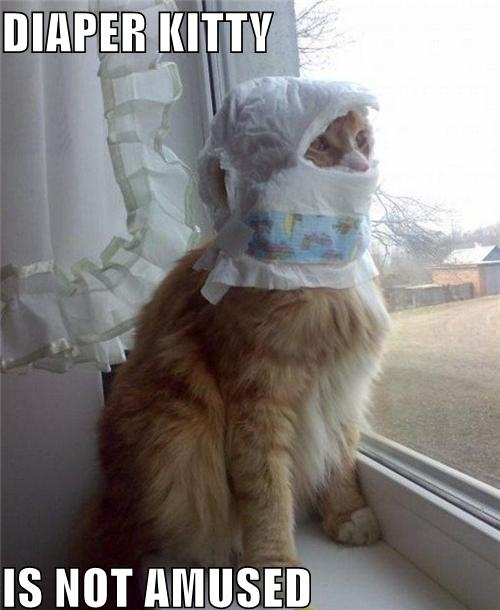 diaper kitty.jpg