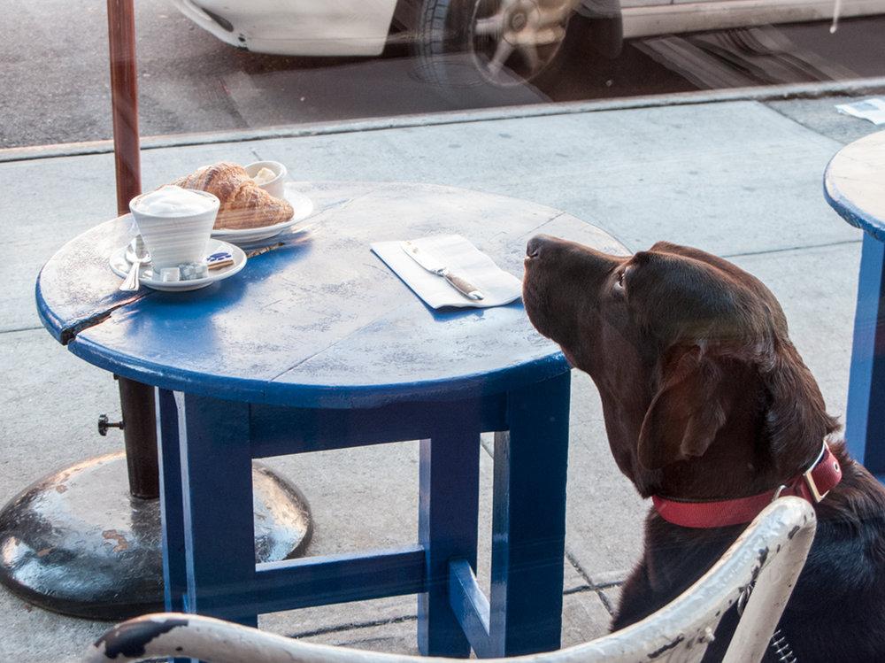 olga guanabara cafe gitane.jpg