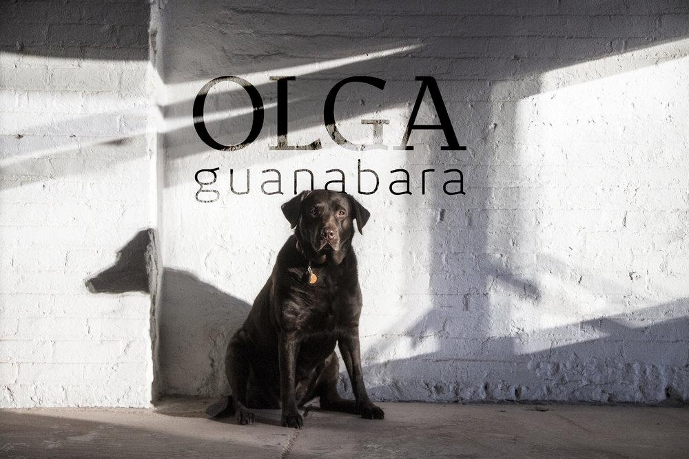 OLGA_guanabara.jpg
