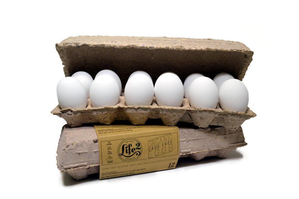 Eggs - Pulp