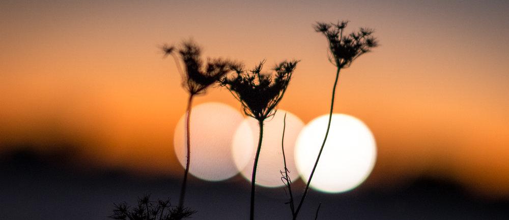 Perdido en La Hora Del Sol